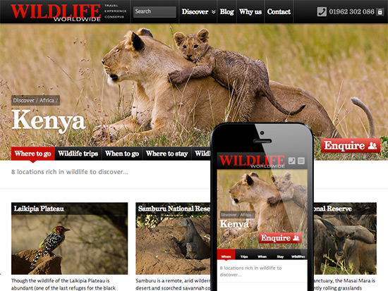 Part of Wildlife Worldwide's Kenya page
